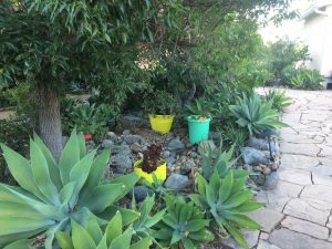 sacred garden in the Mount Helix area of San Diego7