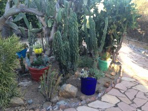 sacred garden in the Mount Helix area of San Diego6