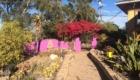 Dr. Carolle's Garden Sanctuary San Diego3