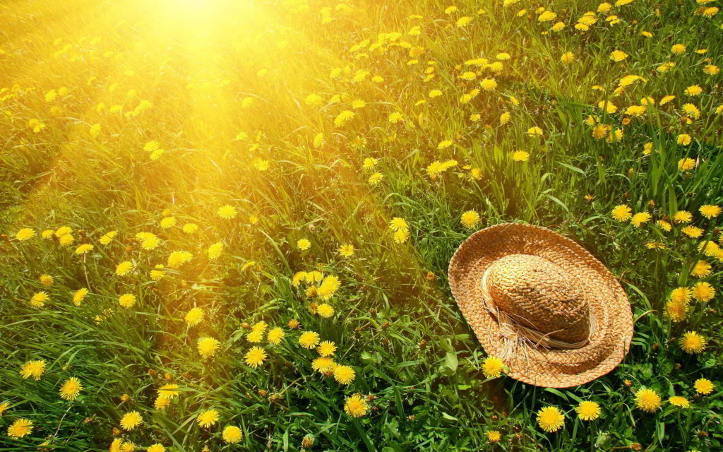 Tips for Staying Safe During Hot Days